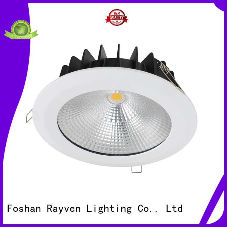 Rayven Custom ip65 halogen downlight factory for shower