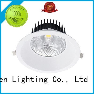 Rayven indoor led downlight pack company for hotel