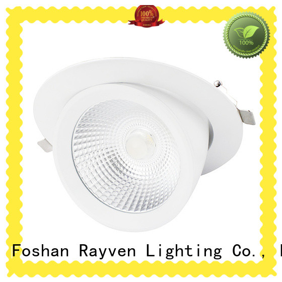 Rayven fixtures 6 recessed downlight for business for office