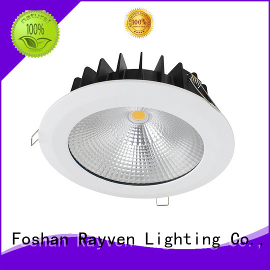 Rayven ip65 new led downlights manufacturers for shower