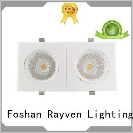 Rayven fixtures 100mm led downlight supply for home