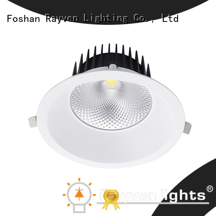 Rayven lighting angled led downlights company for office