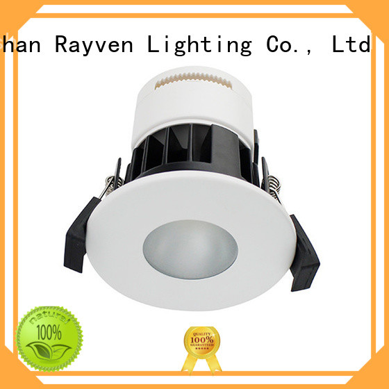 Rayven lightings ip rated downlights manufacturers for kitchen