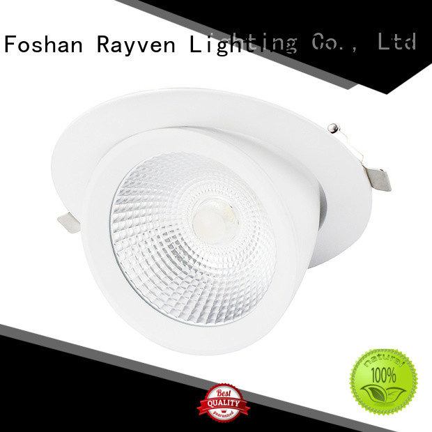 Rayven Top adjustable led downlight supply for home