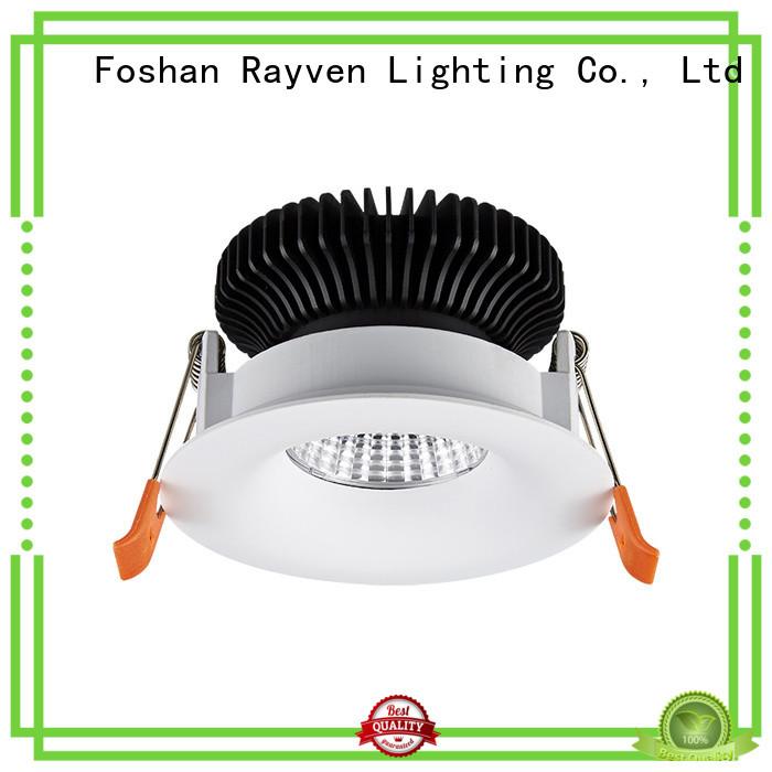 Rayven series ssl led lighting factory for restaurants