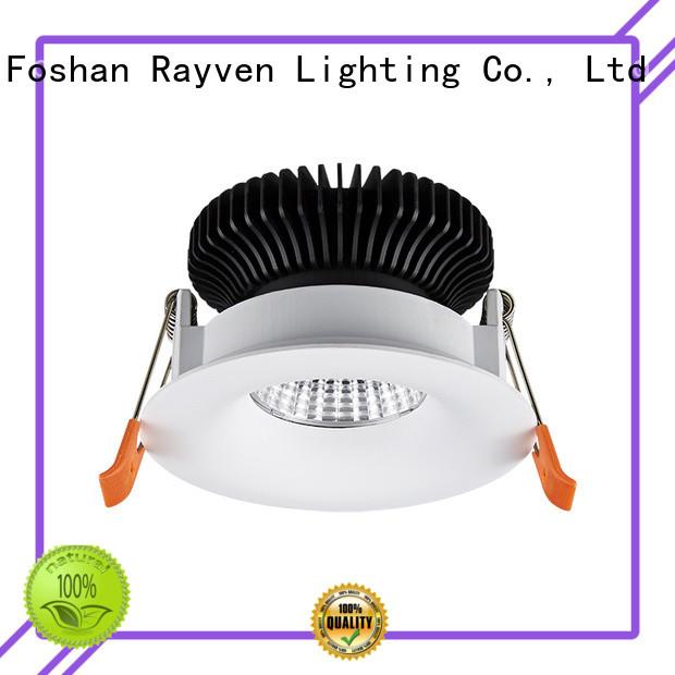 Rayven Best downlight product company for restaurants