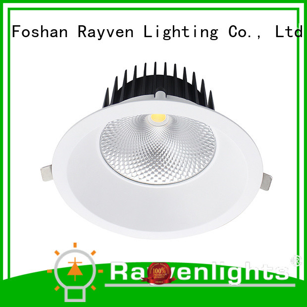 Rayven commercial downlights spotlights ceiling factory for hotel
