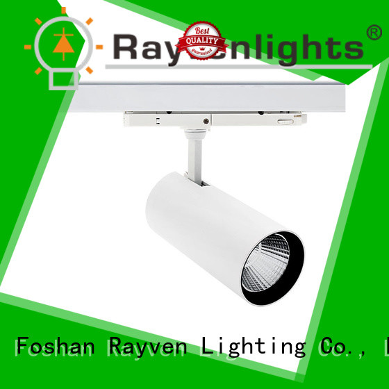 Rayven New commercial kitchen light fittings company for shopping mall