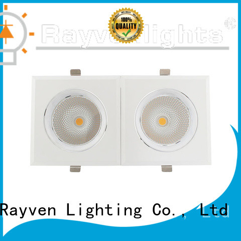 Rayven Top 4 downlight company for office