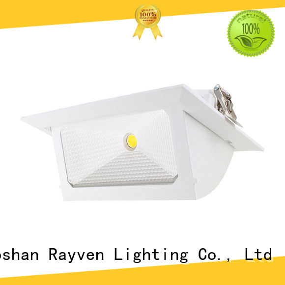 Rayven Top 50mm led downlight factory for hotel