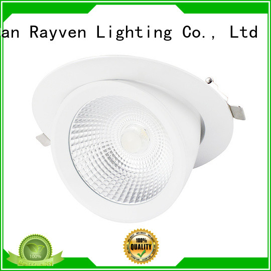 Rayven indoor 12v downlight for business for restaurants