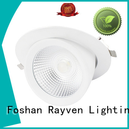 Rayven Custom flush led downlights suppliers for restaurants