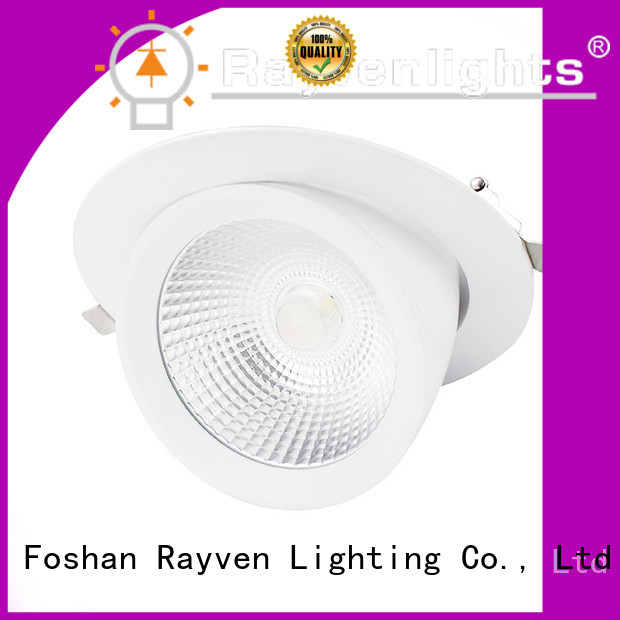 Rayven downlight commercial lighting exterior fixtures for business for shopping mall