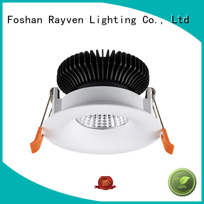 Rayven gongzhi downlight shop supply for office