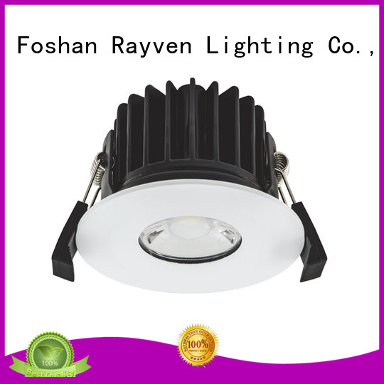 Rayven High-quality fixed downlights manufacturers for home