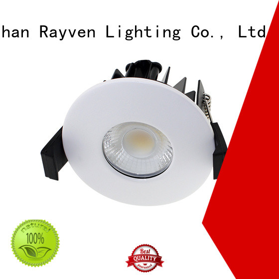 Rayven High-quality fire rated zone 1 downlights factory for showers