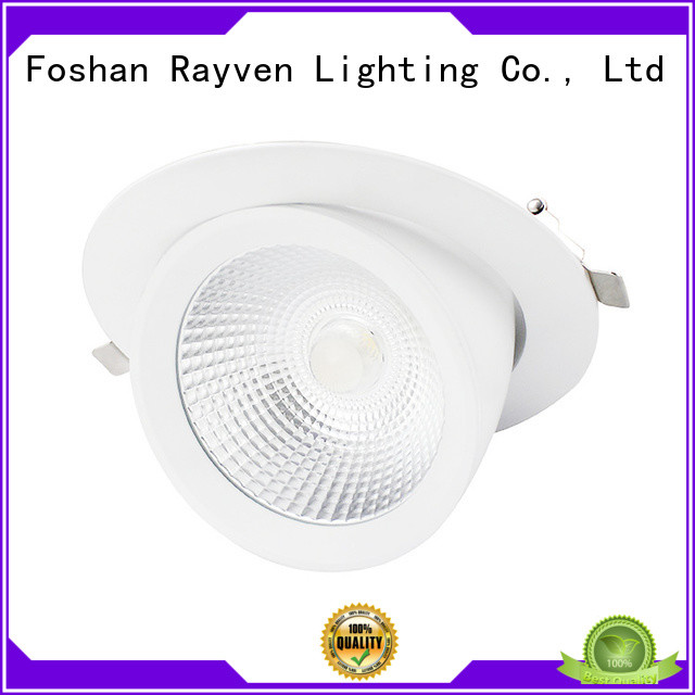 Rayven light recessed adjustable led downlights company for home