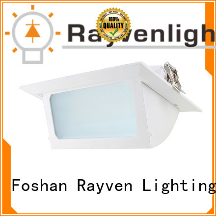 Rayven overhead low energy downlights suppliers for restaurants