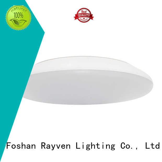 Rayven ceiling ceiling downlights factory for hallway