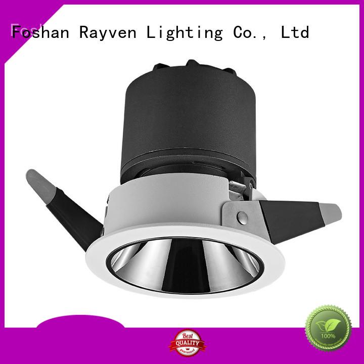 Rayven light energy efficient downlight bulbs for business for hotel