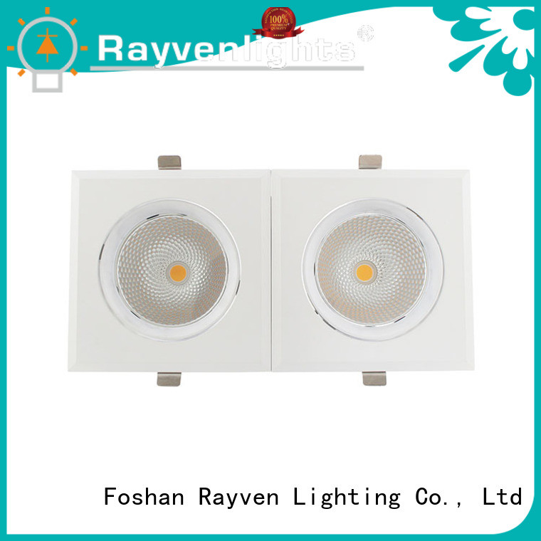 Rayven lighting 12w led downlight factory for restaurants