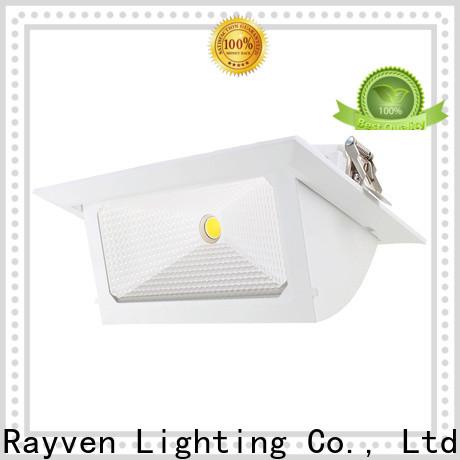 Rayven Best 50mm led downlight factory for home
