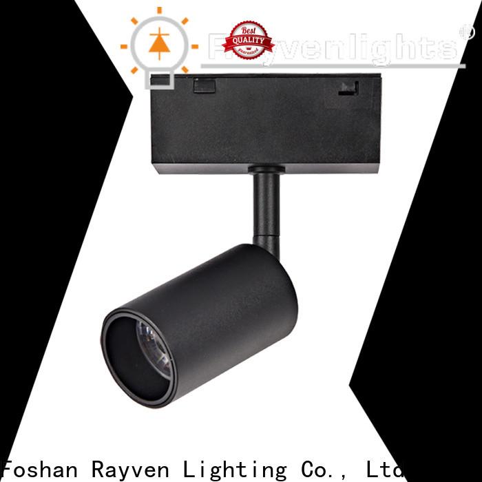Rayven downlight lowes commercial lighting company for restaurants