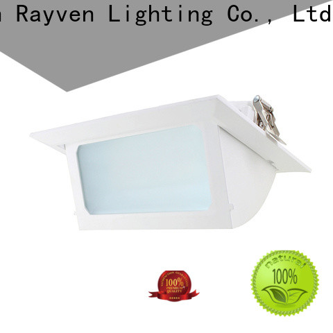 Rayven High-quality 18w led downlight for business for home