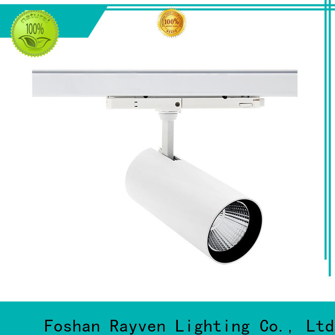 Rayven Latest commercial kitchen led lighting supply for shopping mall