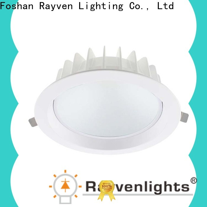 Rayven Top warm white led downlights factory for hotel