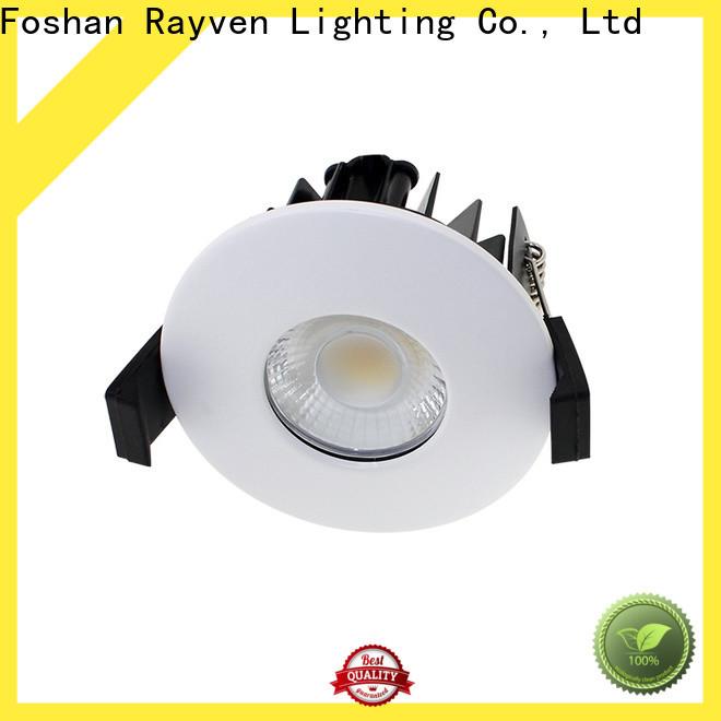 Rayven High-quality ip65 tilt downlight for business for bathroom